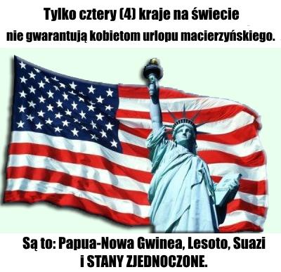 USA flaga statua
