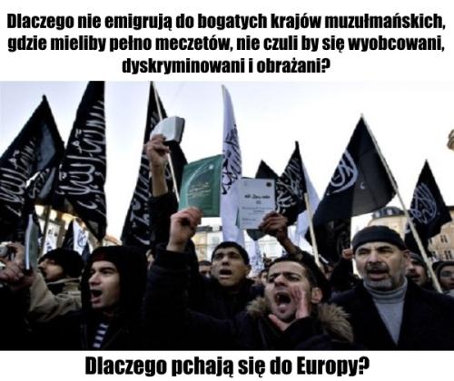 muzulmanscy uchodzcy mem